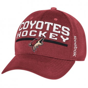 Arizona Coyotes čiapka baseballová šiltovka purple Locker Room 2015