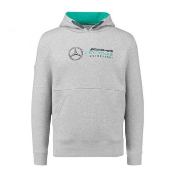 Mercedes AMG Petronas pánska mikina grey F1 2018